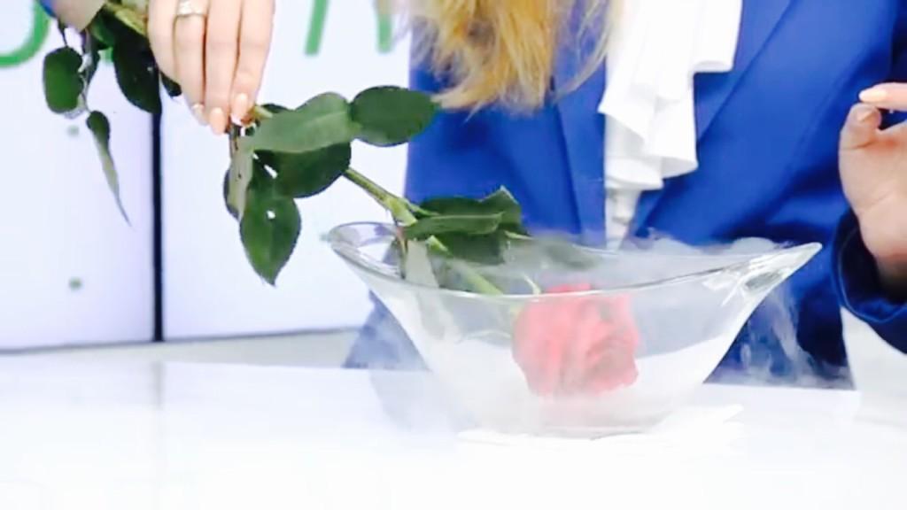 Ольга Игнатьева, дерматокосметолог, Киев, Криодеструкция папиллом, бородавок